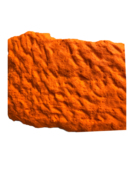 coating mold